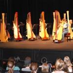 solo harpist