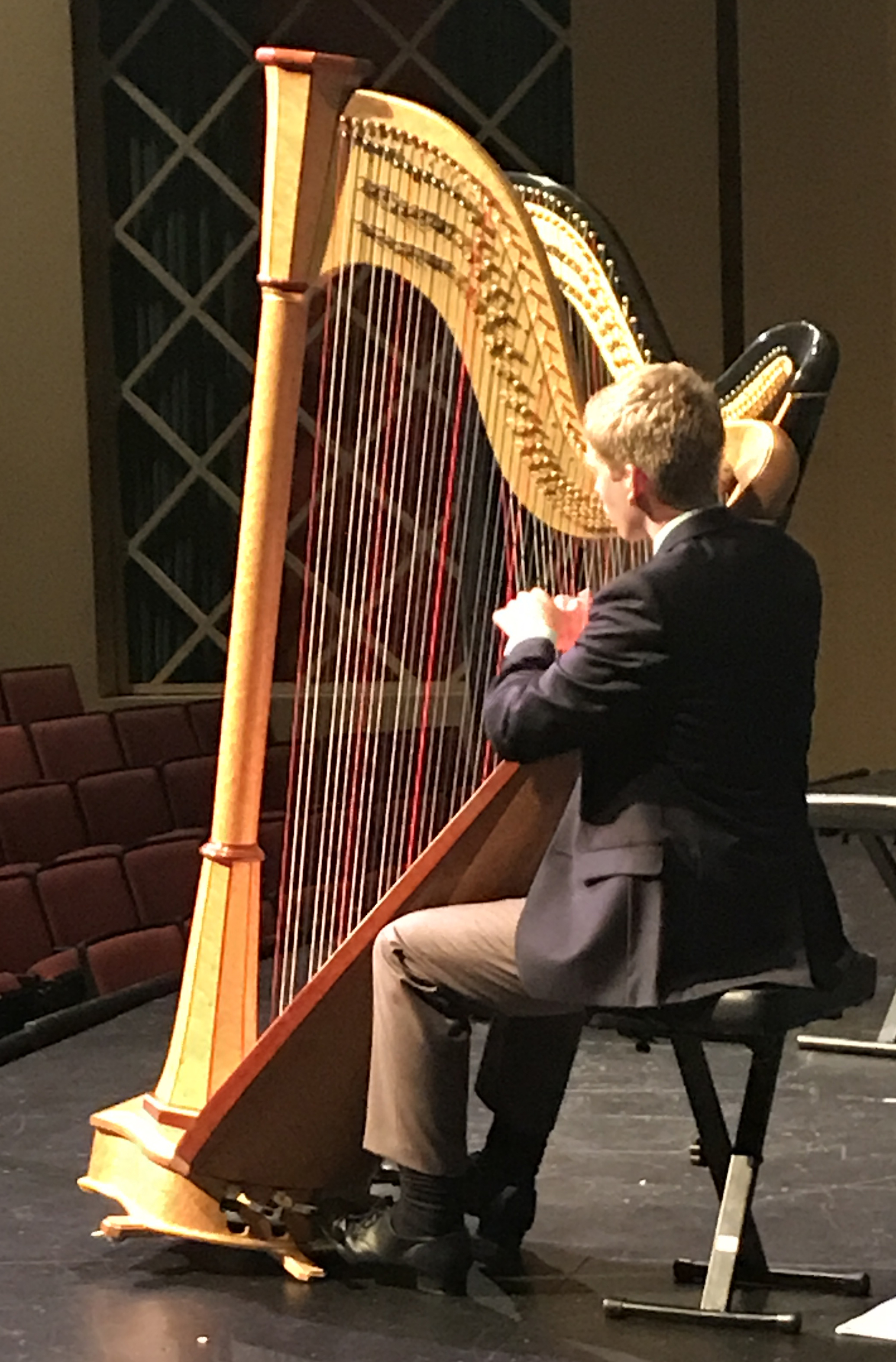 Young Artist's Harp Competition – Young Artist's Harp Seminar